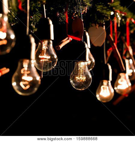 Group of Christmas lamps with interesting shape of tungsten filament, holiday decorations, cinnamon and branches of new year tree
