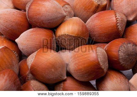 Macro Shooting Of Nuts