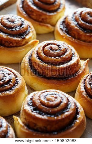 Sweet cinnamon rolls buns with spices and cocoa. Close-up. Kanelbulle - swedish sweet homemade dessert. Christmas baking pastry.