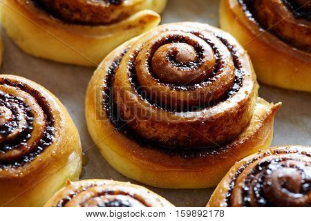 Sweet rolls with cinnamon and cocoa filling. Cinnabon roll bread, homemade bakery. Christmas baking pastry. Kanelbulle - swedish dessert.