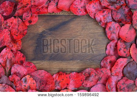 Dark grunge wooden background with lot of red leaves around with copy space