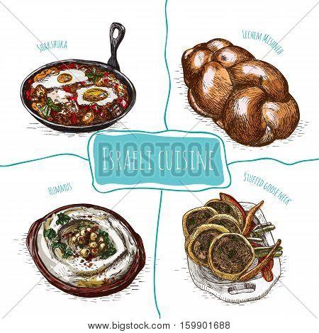Menu of Israel colorful illustration. Vector illustration of israeli cuisine.