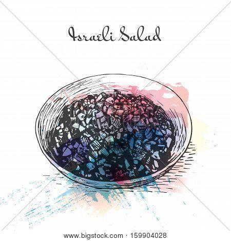 Israeli Salad watercolor effect illustration. Vector illustration of Israeli cuisine.