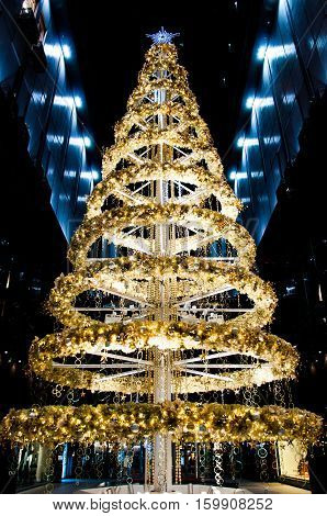 Decorated gold and yellow Christmas tree for celerating season