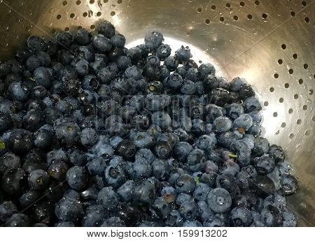 Blueberries freshly washed waiting to be eaten