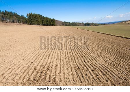 Arable Land And Forest.