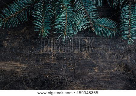 Christmas fir tree on wooden background with space for text. Christmas decoration. Merry Christmas and Happy New Year. Xmas time background. Winter holidays. Christmas concept. Top view. Copy space.