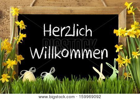 Blackboard With German Text Herzlich Willkommen Means Welcome. Spring Flowers Nacissus Or Daffodil With Grass, Easter Egg And Bunny. Rustic Aged Wooden Background