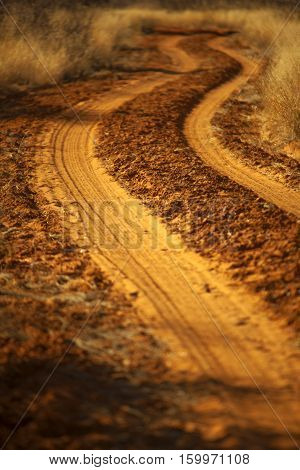 road from sand with scorched grass in africa