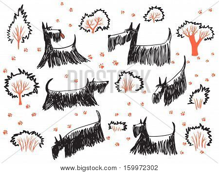 Doodle hand drawn set with skotch terriers dogs their footprints and trees and bushes. Сute pets walk out
