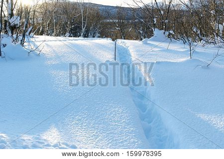 The snowcapped mountains and trees.The cool temperature. The low sun reveals the texture of the snow. Lane is beaten a path In snow.