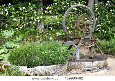 Old water pump in the garden Retro iron water pump in the garden.
