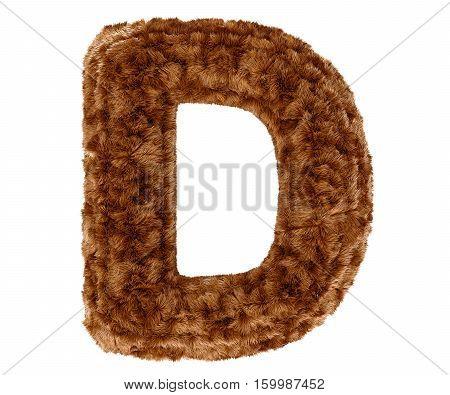 Wild animal brown bushy bear decorative fur alphabet capital letter D. 3d rendering illustration. Isolated on white background