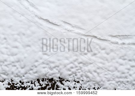 footprints on white snow and black ground, walk, pathfinder, winter, frost