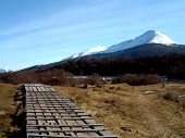 snowy mountain and a wooden pathway at ushuaia southern argentina poster