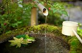 Japanese water source and ladle for the purification of hands poster