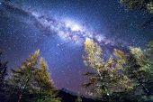 Milky way at Glentanner campsite, New Zealand poster