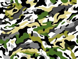 Seamless vector camouflage print. Vector abstract illustration.