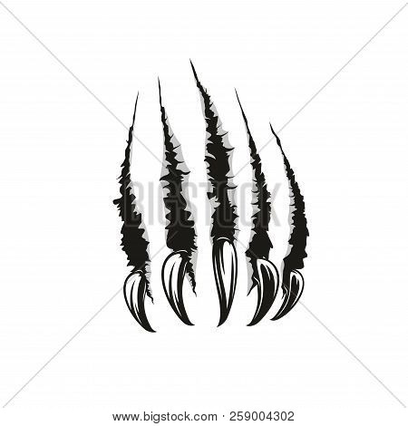 Claw Scratches Or Wild Animal Paw Torn Marks. Vector Sharp Nails Slashes Or Scars With Laceration An