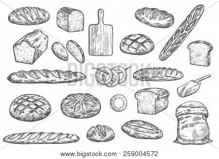 Bread Sketch And Baker Items. Vector Isolated Flour Bag With Dough, Wheat Bread Bagel Or Toast Loaf