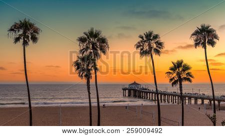 Palm Trees At Manhattan Beach In California, Los Angeles, Usa. Vintage Processed. Fashion Travel And