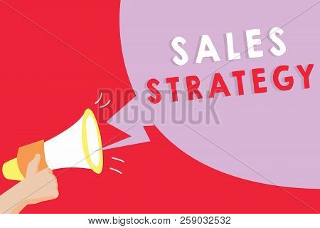 Text Sign Showing Sales Strategy. Conceptual Photo Plan For Reaching And Selling To Your Target Mark
