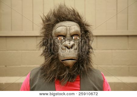 a male model wears a Gorilla Head Costume at the request of the photographer
