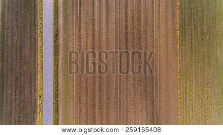 Plowed Field With Furrows Row. Farmland With Road Aerial Drone Top View