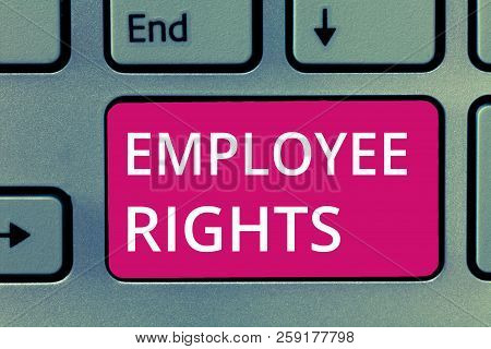 Conceptual hand writing showing Employee Rights. Business photo showcasing All employees have basic rights in their own workplace poster