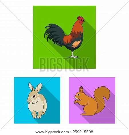 Realistic Animals Flat Icons In Set Collection For Design. Wild And Domestic Animals Vector Symbol S
