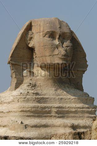 Head of Great Sphinx in Giza near Cairo, Egypt