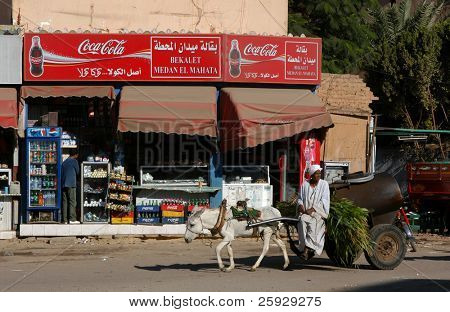 Water-carrier in front of a grocery shop in Luxor, Egypt