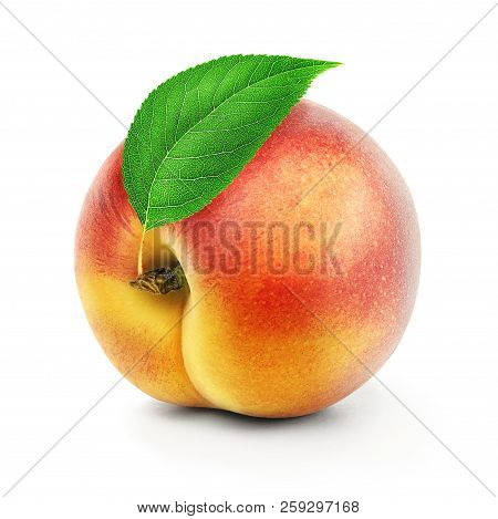Isolated Peach. One Fresh Peach Or Apricot Fruit With Leaves Isolated On White Background