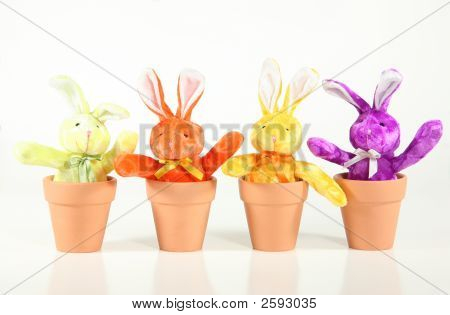 Sprouting Bunnies