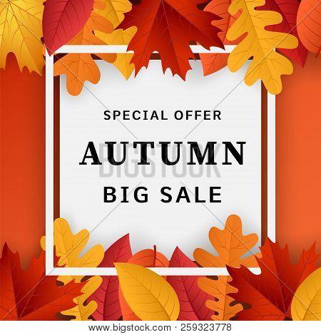 Autumn Big Sale Concept Background. Realistic Illustration Of Autumn Big Sale Concept Background For