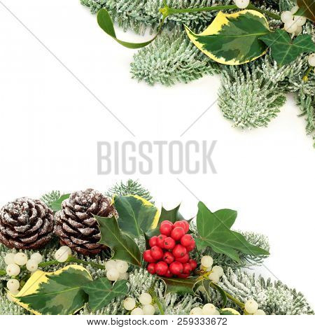 Winter and Christmas background border with holly berries, snow covered spruce pine, ivy, pine cones and mistletoe on white background with copy space.