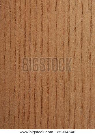 Amur corktree wood texture