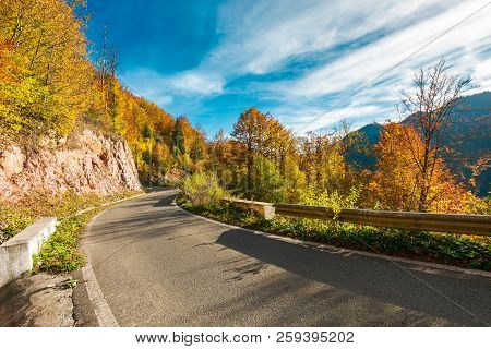Ride Through Fall Foliage Forest. Beautiful Sunny Day In Mountains