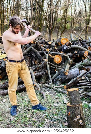 Man Brutal Attractive Guy Collecting Wood Forest. Axe Woodsman Equipment. Man Beaded Brutal Sexy Lum