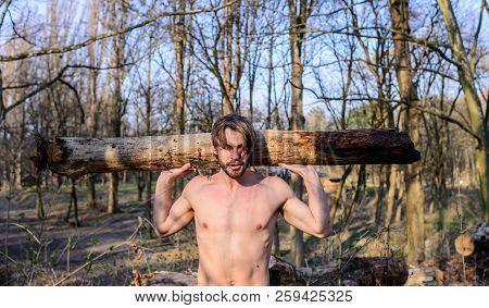 lumberjack Sexy men naked