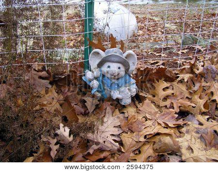 Stone Garden Mouse