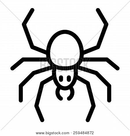 Spider Line Icon. Arachnid Vector Illustration Isolated On White. Insect Outline Style Design, Desig