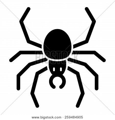 Spider Solid Icon. Arachnid Vector Illustration Isolated On White. Insect Glyph Style Design, Design