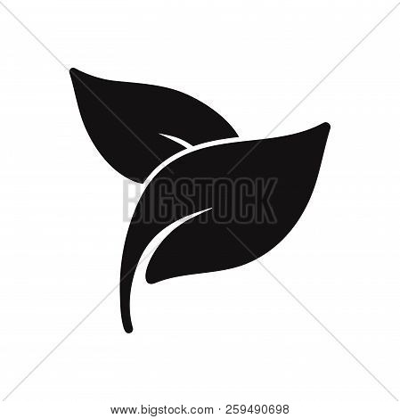 Leaves Icon Isolated On White Background. Leaves Icon In Trendy Design Style. Leaves Vector Icon Mod