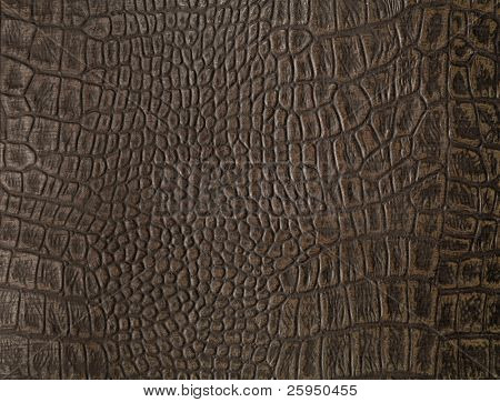 Synthetic faux alligator skin from a cover of an old photo album