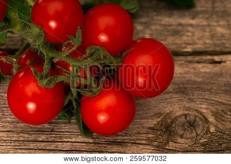 Branch Of Tomatoes  On Rustic Wooden Background