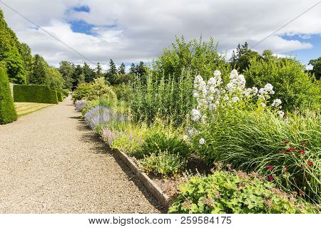 English Country Garden Full Of Perennial Herbaceous Plants
