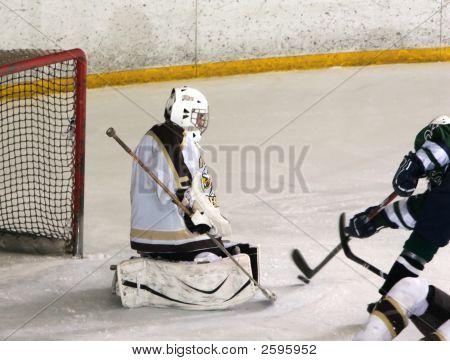 Point Blank Shot On Goal, Hockey