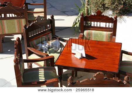 Restaurant chairs and sleeping cat
