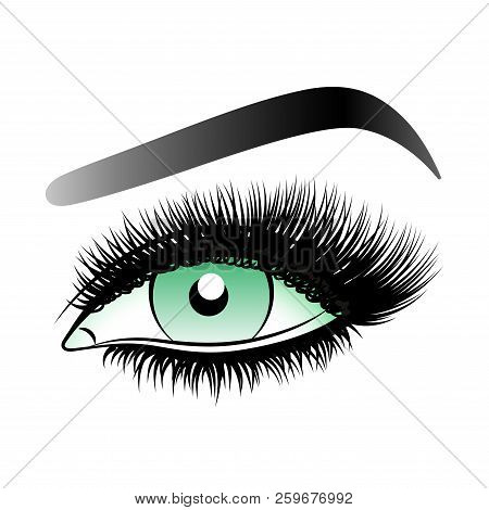 Green Woman Eye With Long False Lashes With Eyebrows.vector Illustration Isolated On White Backgroun